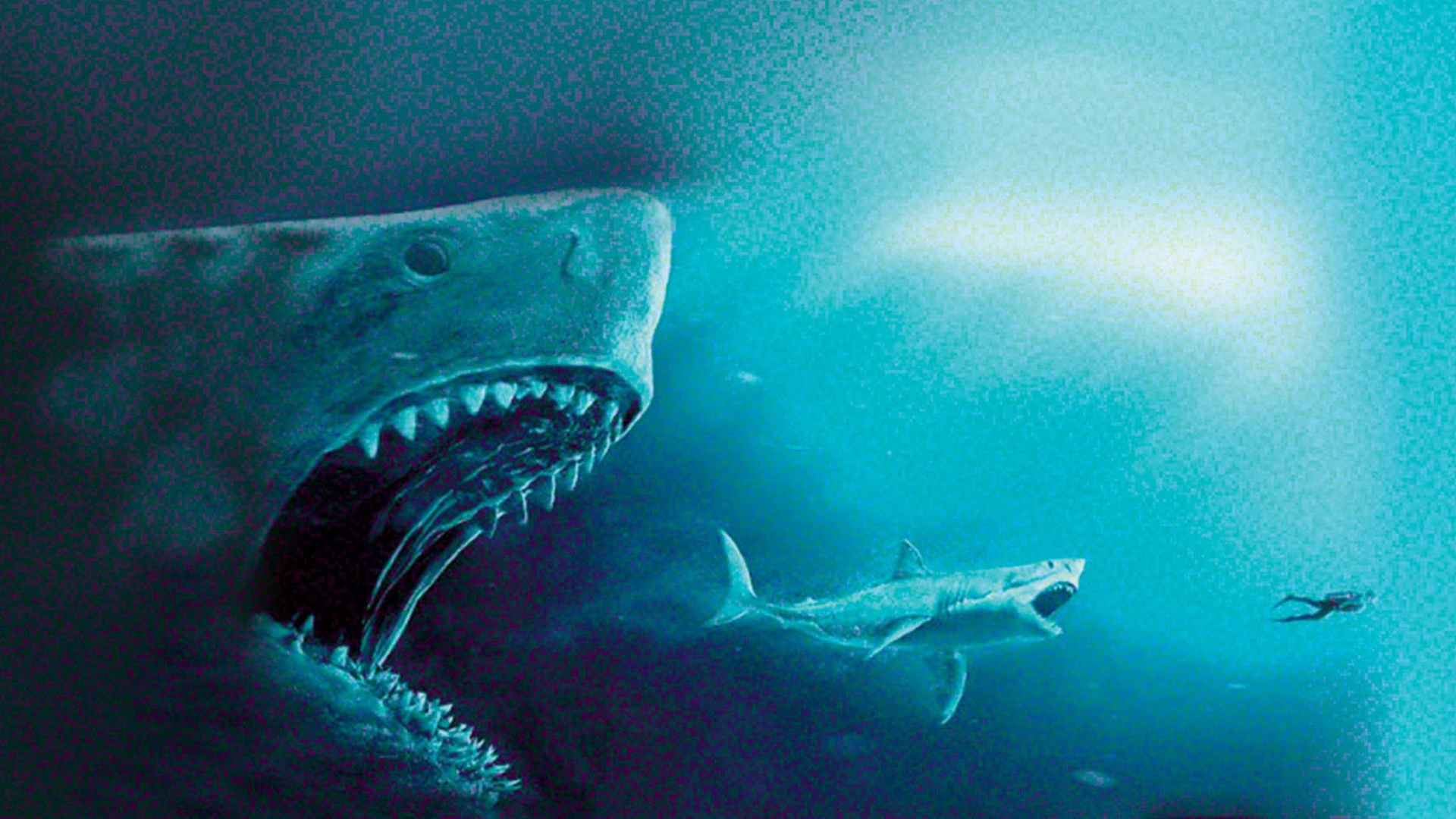 megalodon shark movie - HD 1920×1080